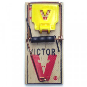 Victor  M325 M7 Pro Mouse Wood Snap Traps - 72/box