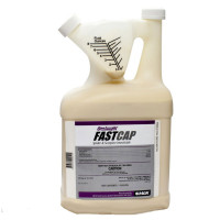 Onslaught FastCap Spider and Scorpion Insecticide -1 gallon